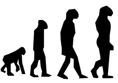 Just as previous humanoids have become extinct to make way for modern man, the middle-level manager is a concept of the past. (Image: Pixabay)